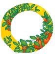 tangerine card garden vector image