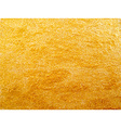 texture of golden surface vector image vector image