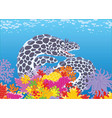 black and white spotted moray vector image