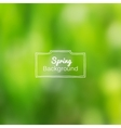 blurred nature spring green background vector image vector image