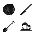 cabbage nail file and other web icon in black vector image vector image