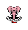 logo template with elephant head vector image