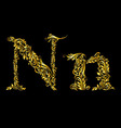 Decorated letter n vector image