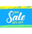 Big sale hand written lettering vector image