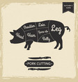 butchers library vintage page - pork cutting vector image