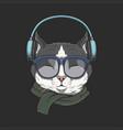 cat wears headphones vector image vector image
