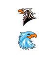 eagle head symbol vector image vector image
