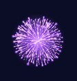 firework isolated beautiful purple firework on vector image vector image