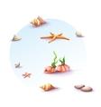 image set seashells and stones vector image vector image