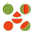 Set of juicy whole watermelons and slices in flat vector image vector image