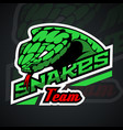 snake logo template for team sport theme vector image