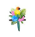 tropical bird composition vector image vector image