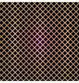 gold lattice on black background vector image