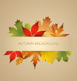 Aunumn background with leaves vector image