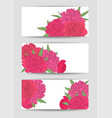 beautiful set horizontal banners with flowers vector image