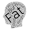 Burn Fat fast text background wordcloud concept vector image vector image
