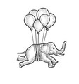 elephant flies on balloons sketch vector image