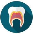 flat design modern tooth icon with long shadow vector image
