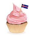 Iceland Cupcake vector image vector image