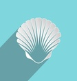 Sea shell vector image vector image
