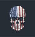 skull head america vector image
