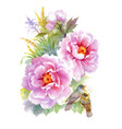 watercolor flowers and birds on white background vector image