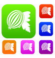 gooseberry with leaves set color collection vector image vector image