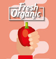 hand holding vegetable fresh organic pepper vector image vector image