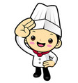head cook character military salute isolated on vector image vector image