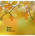 Nature background with yellow leaves vector image vector image