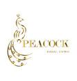 peacock line art eps 10 vector image vector image