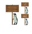 Penguin holding a sign vector image vector image