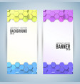 vertical banners with colorful hexagons vector image