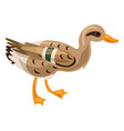 wild duck icon cartoon style vector image