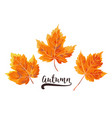 autumn watercolor style seasonal card design with vector image