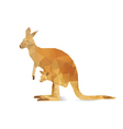 Abstract kangaroo vector image