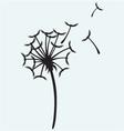 Dandelion on a wind vector image vector image