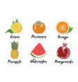 engraved style organic vegetables collection vector image vector image