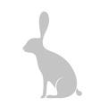 Hare Icon vector image