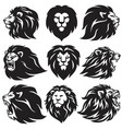 lion logo set collection premium design vector image vector image