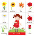 Printable flash card for flowers and little girl vector image vector image