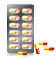 Pill capsule in blister pack vector image