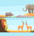 african wild banners set vector image