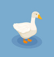 goose isometric poster vector image vector image