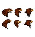 hawk heraldic mascot icons set vector image