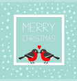 merry christmas greeting card bullfinch winter vector image vector image