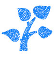 plant tree grunge icon vector image