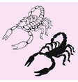 scorpion silhouette vector image vector image