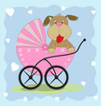 dog in wheelchair vector image