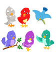collection pretty birds with different color vector image vector image